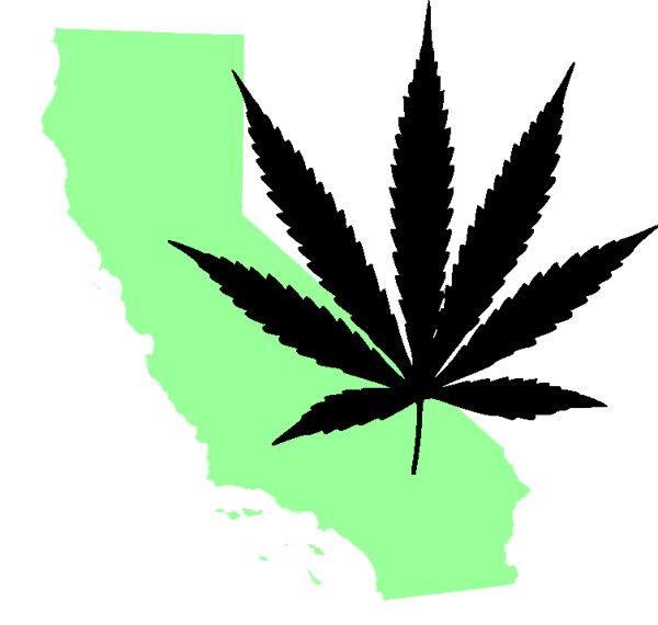 California Marijuana Businesses Growing Faster Than the Plant Itself