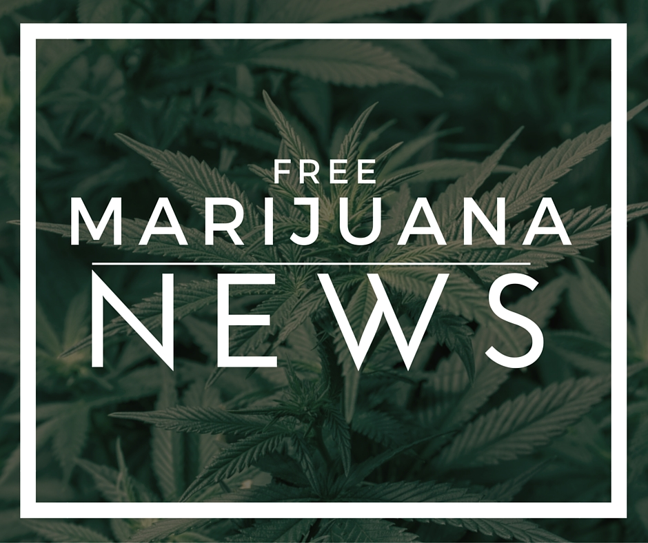 We provide the consumers and business professionals and investors in the cannabis industry with legal news, education and more