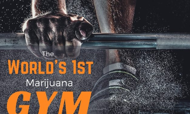 Who Says Marijuana and Athletics Don't Mix? The World's First Cannabis Gym Opens Soon.