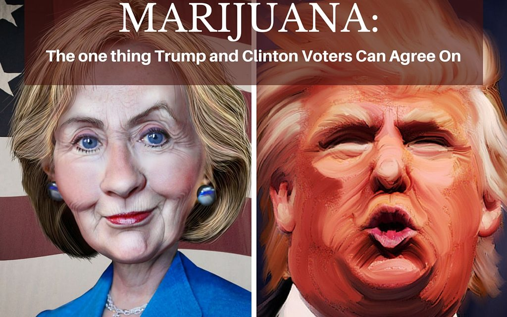 Marijuana: The One Issue Trump and Clinton Voters Can Agree On